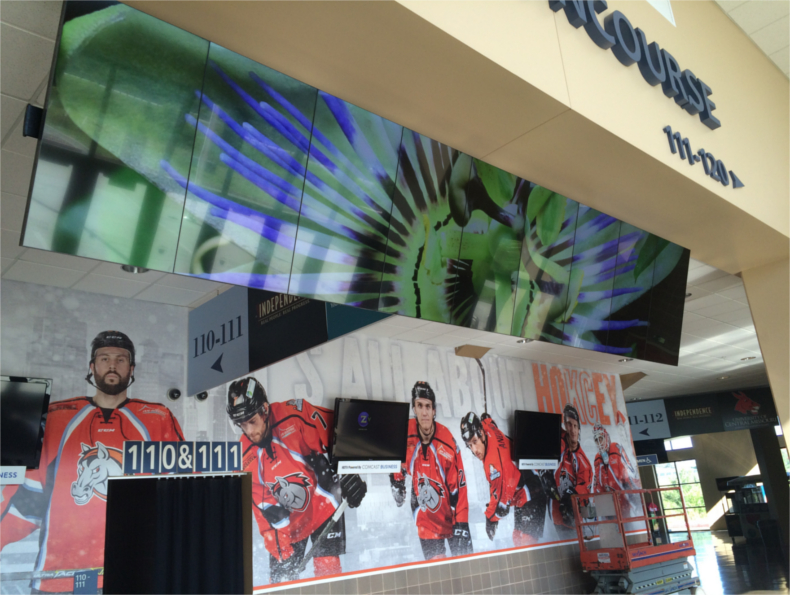 A banner videowall deployment at the Silverstein Arena in Kansas City MO greets attendees with stunning visuals in 4K upon entering the arena.