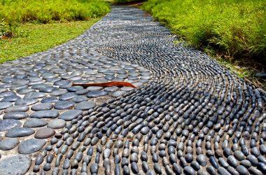 Path, AVIXA