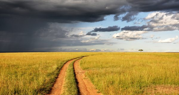 Path, Sunny Path, New Path for Worship Leaders